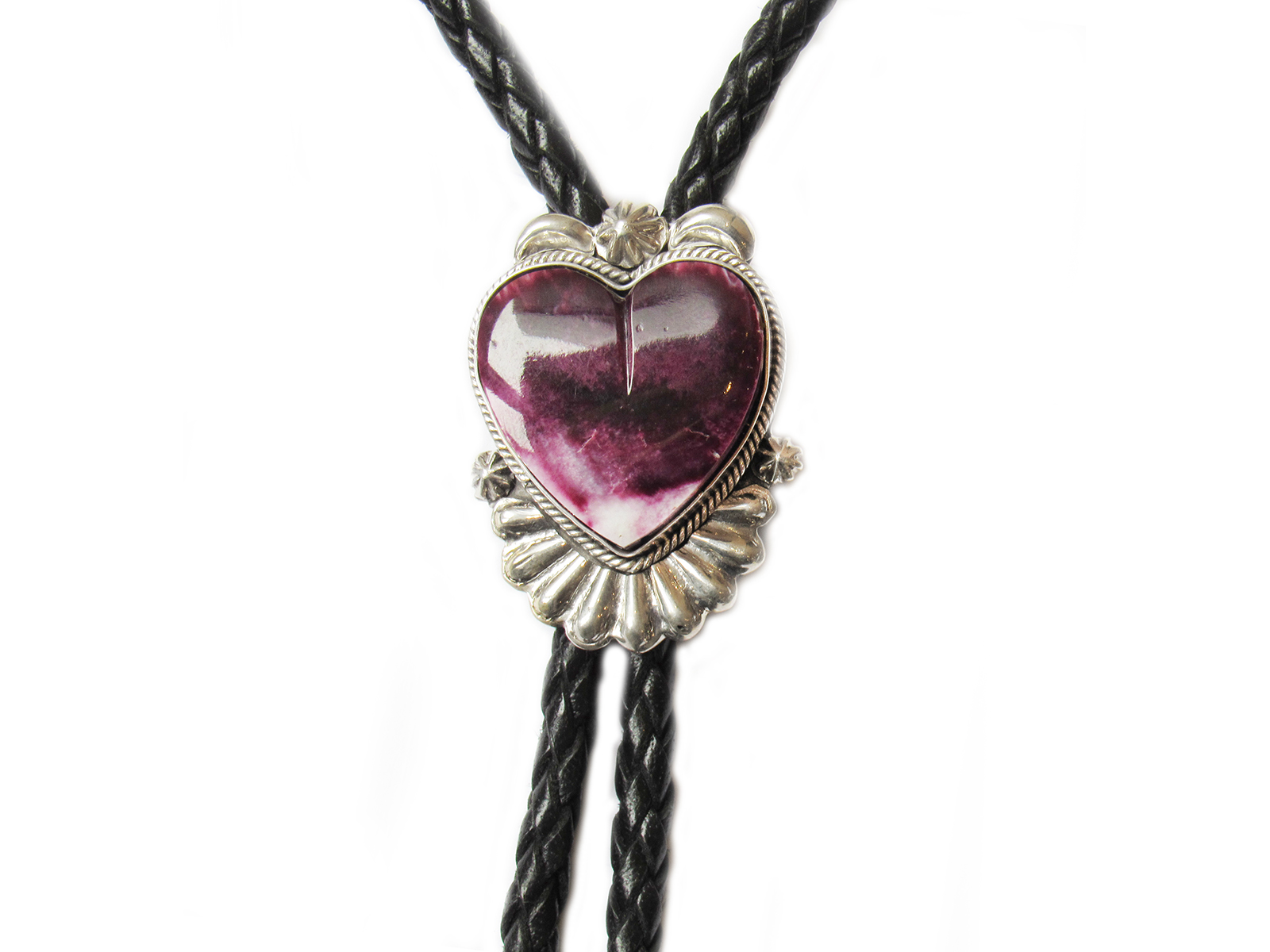 Purple Spiny Oyster Bolo