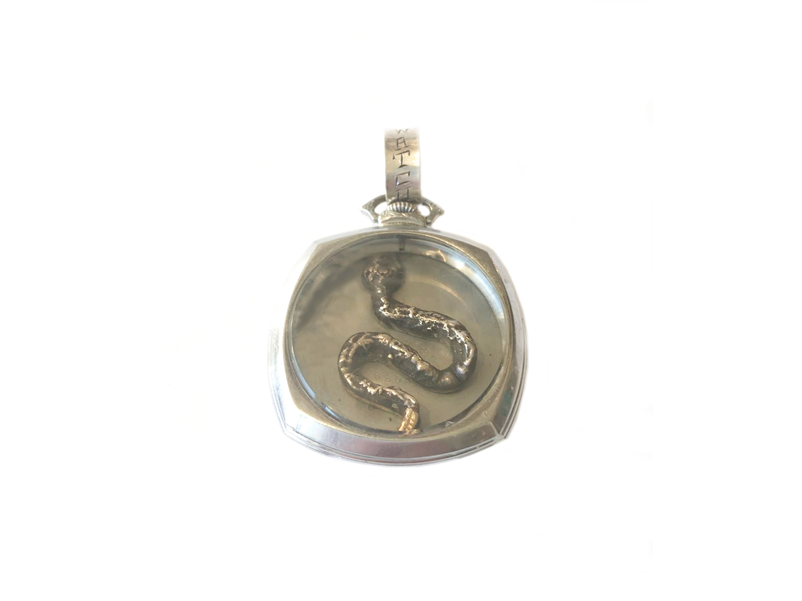 Watch For Snakes Pendant